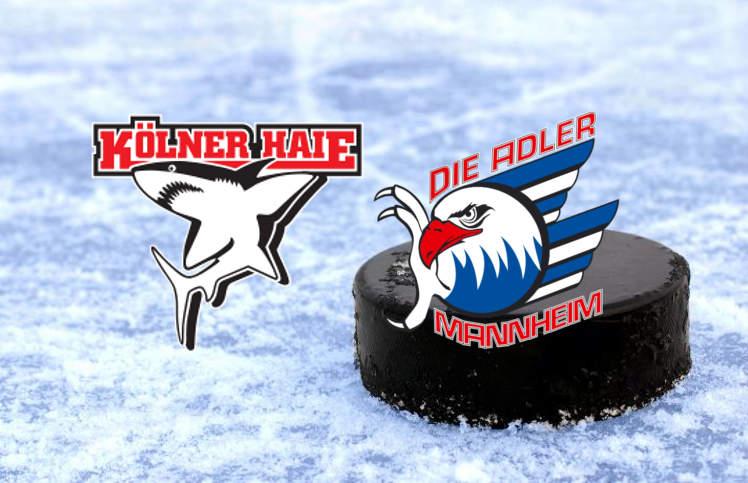 Wettquoten-Vergleich Kölner Haie Adler Mannheim